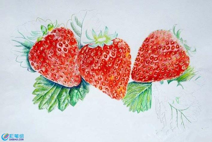 超写实草莓彩铅画教程图解