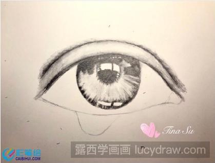 素描流泪眼睛画法步骤:   第一步:打形画出眼睛的基本形态,还不知道怎么画素描眼睛的小伙伴,可以看看彩笔绘之前给大家分享的教程。打形之后先给眼睑涂色,上眼睑中部因为凸起并且受光,所以在明度上较亮,,上眼睑的两边逐渐变暗。这时候需要使用不同的铅笔对纸的力度,让铅笔在纸上涂抹的时候,自上眼睑中间到两边下笔力度由轻变重。涂完颜色后可以用棉签涂抹,从而晕染画面,使皮肤更柔和。    之后开始给瞳孔上面的眼黑部分上色,这部分颜色需要比较深,因为眼睑挡住了眼黑的光线。   第二步:接下来画瞳孔和虹膜。虹膜的方向是