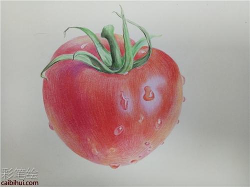 彩铅怎么画西红柿