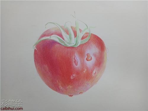 彩铅画西红柿的步骤