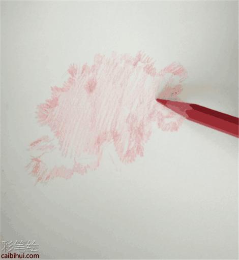 彩铅画花卉:手绘康乃馨彩铅画教程