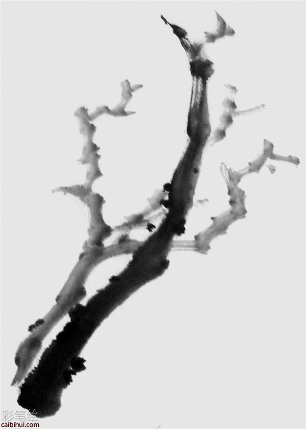 详细教你怎么画国画牡丹花- 素描彩铅画画水彩-彩笔绘
