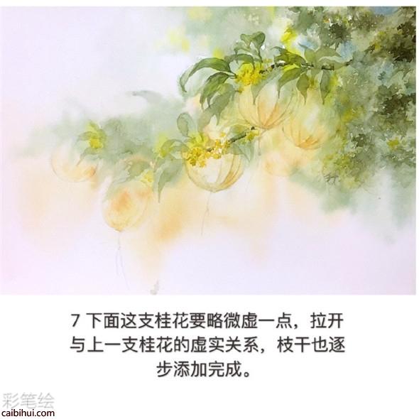 水彩画树教程:桂花树的水彩画画法教学