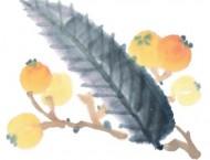 《国画初学者入门综合篇》-石榴