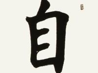田老师每日一题每日一字欧颜柳赵体楷书第十九课