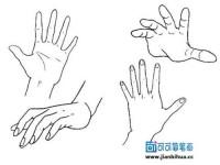 漫画教学视频—手部的画法