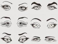 动漫画视频之眉毛的种类及画法