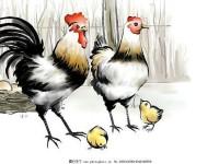 国画技法鸡的几种画法,你会几种?