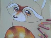彩铅画<font color='red'>动物</font>之小浣熊