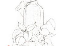 <font color='red'>飞乐鸟</font>水彩画透明玻璃和绿叶植物