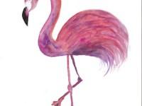 教你用水彩画一个很具装饰色彩的火烈鸟!
