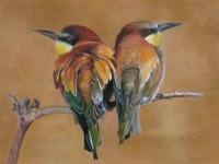 油画<font color='red'>动物</font>教程-小鸟的画法