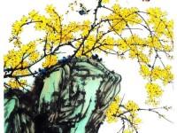 国画教学系列之迎春花的画法