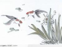 国画教程之金鱼的画法