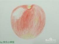 彩铅手绘基础入门教程苹果窝刻画