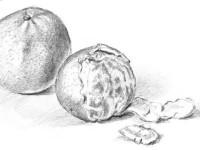 素描画<font color='red'>水果</font>教程之橘子的画法