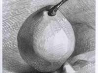 素描单个静物水果-梨的画法