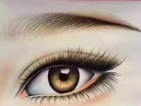 素描眉毛的画法教程
