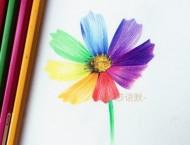 很漂亮又简单的彩铅小花