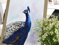 用鲁本斯颜色和水彩纸画孔雀