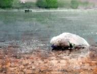 俄罗斯水彩画家的水彩画郊外风景