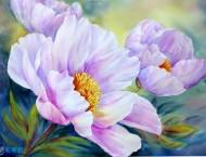 英格兰水彩画家的水彩花卉作品