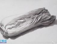 素描画手绘大白菜