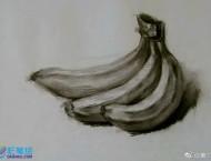 素描画手绘香蕉