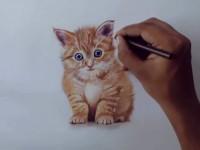 试试用彩铅画小<font color='red'>猫</font>咪