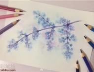 水溶性彩铅画清新唯美的花卉