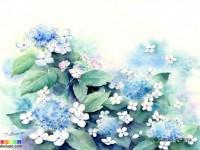 水彩风景与花卉